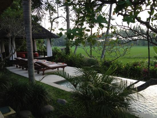 Villa Pantulan: overlooking the rice field