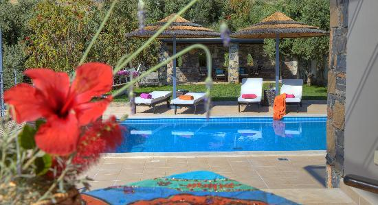 Anemos Elounda Luxury Villas: AVRA VILLA POOL