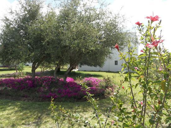 Domaine de l'Arganeraie : garden