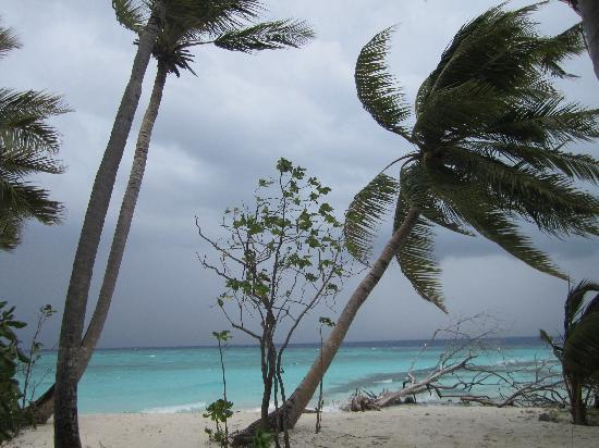 Asdu Sun Island: Tempesta ad Asdu