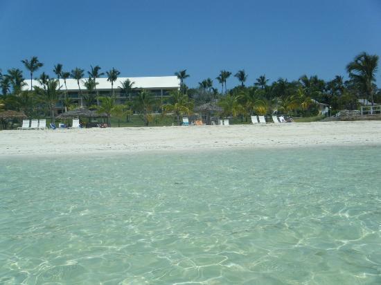Abaco Beach Resort and Boat Harbour Marina : Abaco Beach Resort