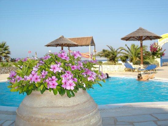 Fyrogenis Palace Hotel: ΠΙΣΙΝΑ