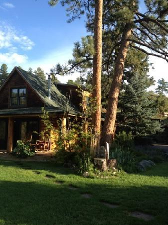 The Cabins at Country Road: The Owl's Nest