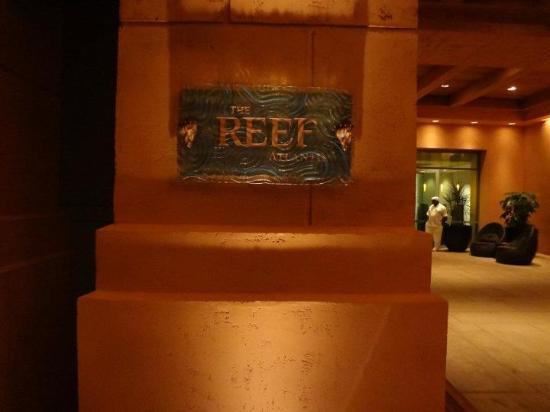 The Reef Atlantis, Autograph Collection: Welcome!