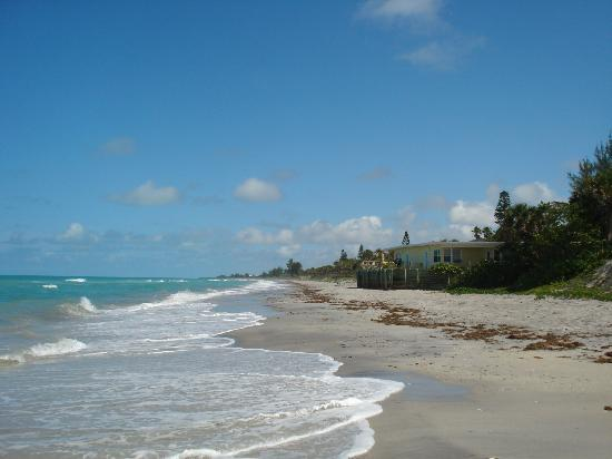 Pearl Beach Inn: A view of the resort from the beach