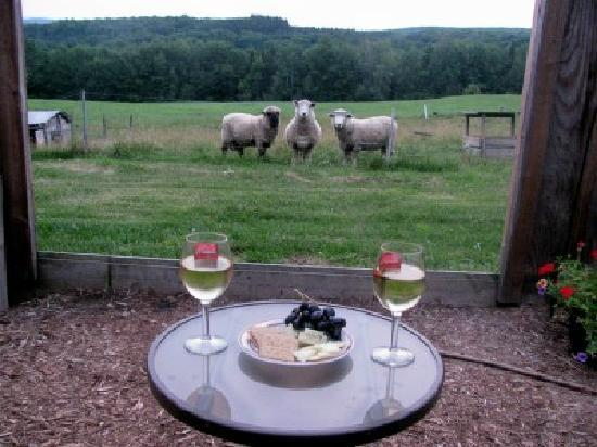 Vermont Grand View Farm and Bed & Breakfast: Wine and Cheese