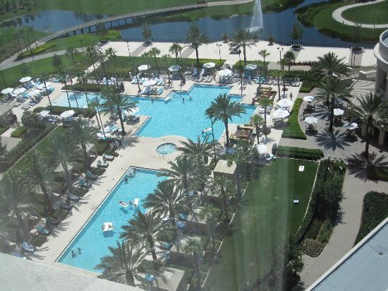 Pools Picture Of Waldorf Astoria Orlando Orlando Tripadvisor