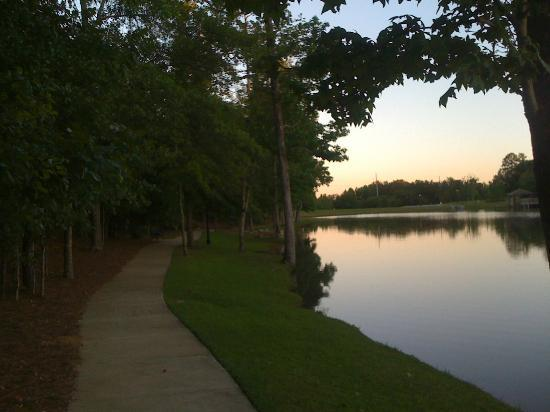 Hilton Garden Inn Columbus: Side trail and pond