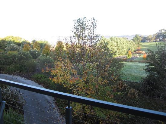 Balgownie Estate Vineyard Resort & Spa: view out of our lounge room window