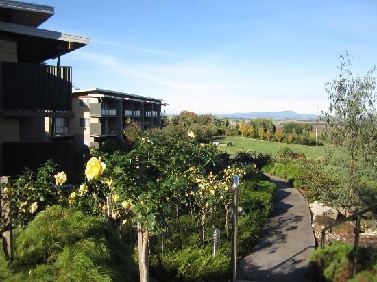 Balgownie Estate Vineyard Resort & Spa: grounds of balgownie estate