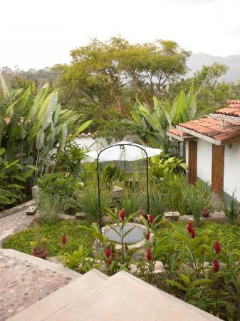 Terramaya: Garden behind hotel building