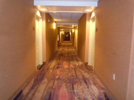 Embassy Suites by Hilton Minneapolis - North: Well lit hallway