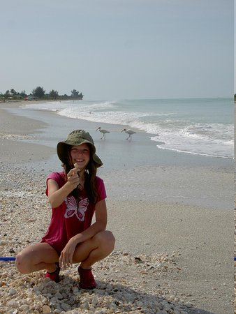 West-End Paradise : Lots of shells AND birds...fantastic!