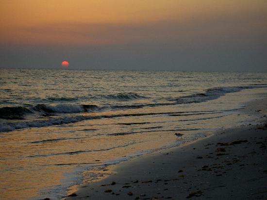West-End Paradise: inn's neighborhood beach sunsets -beautiful