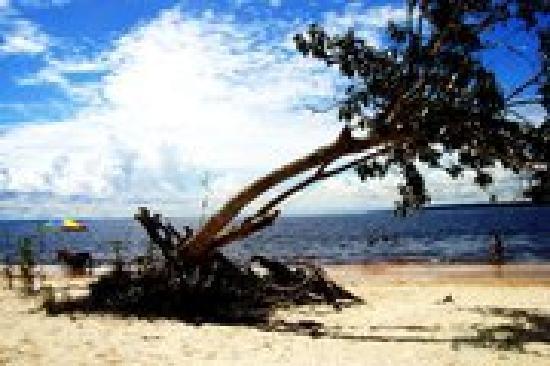 Praia do Tupé : Praia de Rio
