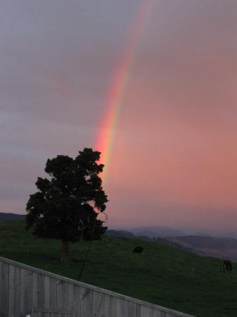 Harris Hill Cottages : Rainbow on the first morning.