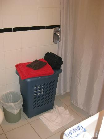 Diana's Place Lake View Accommodation: laundry basket in each bathroom