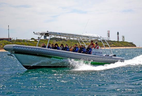 South Bay Eco Adventures Day Tours