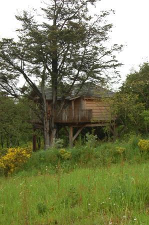 La Gree des Landes: La cabane