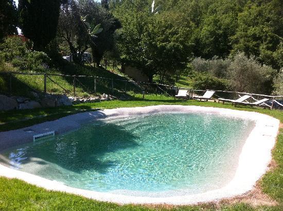La piscina del podere le pialle con acqua salata picture of podere le pialle pontassieve - Piscina con acqua salata ...