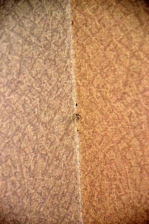 Inner Hotel: undefinierbare Flecken an der Wand