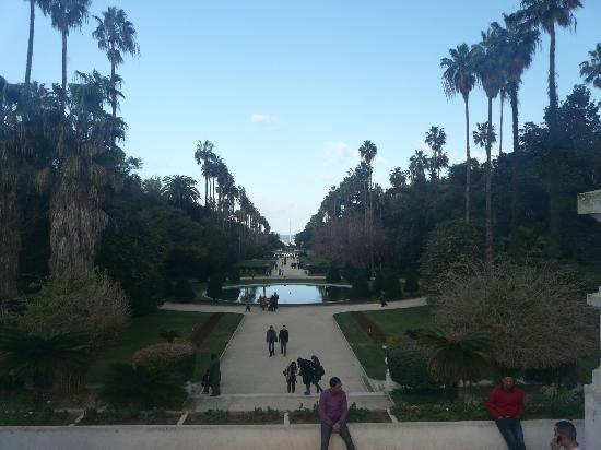 Le Jardin d'Essai du Hamma: Visa at the French garden, Le Jardin d'Eassai du Hamma, Algiers, Algeria