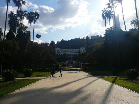 Le Jardin d'Essai du Hamma: Le Jardin d'Eassai du Hamma, Algiers, Algeria