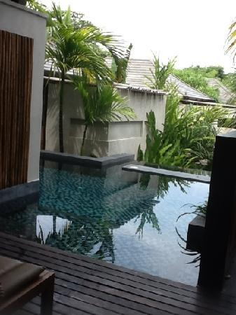 pool from jacuzzi suite