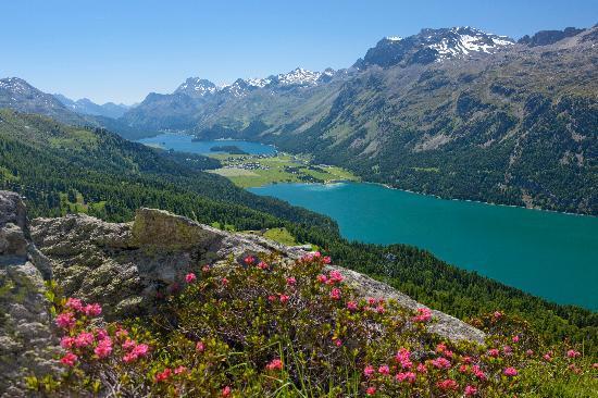 Schweiz: View of Lake Silvaplana