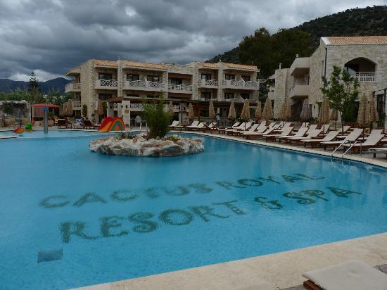 Cactus Royal Resort: vue de la piscine