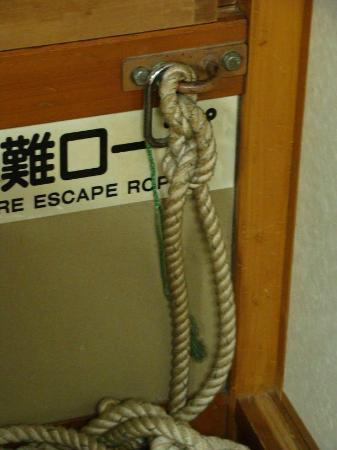 Shunkoso: Detalle de la cuerda