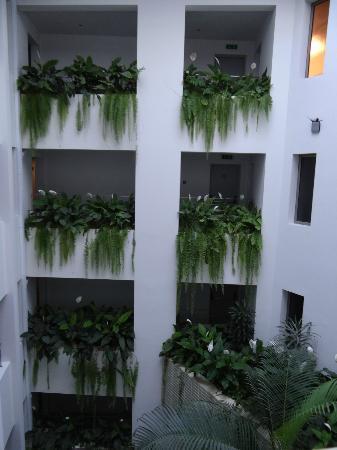 Madeira Regency Cliff: Atrium garden in hallways