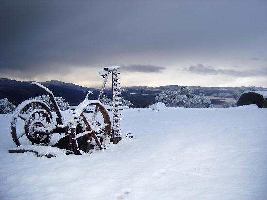Altitude 1260 Resort: Winter wonderland