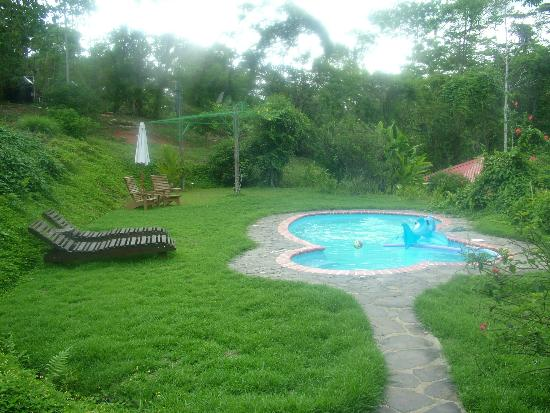 La Cacatua Lodge: Swimming pool