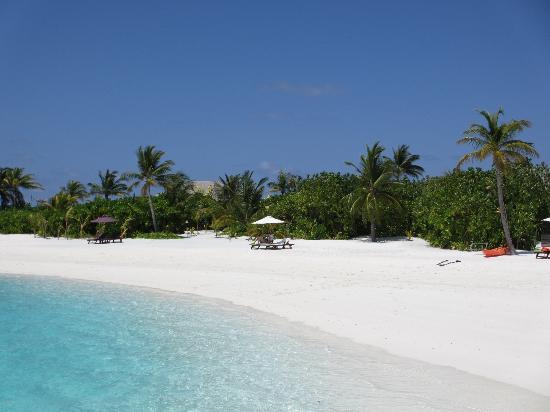 Naladhu Resort Maldives: Überfüllter Strand ;)