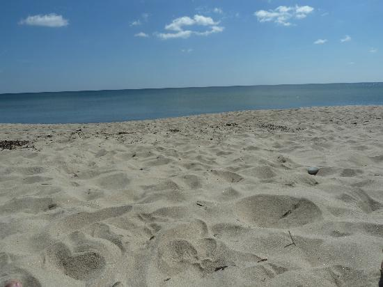 Drakamollan Gardshotell : Beach nearby
