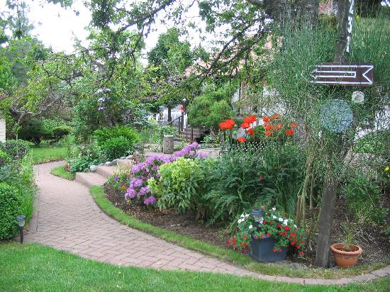 Jacquie Gordon's Bed and Breakfast : entering the garden