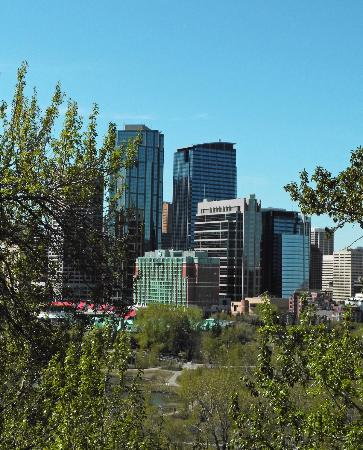 Sheraton Suites Calgary Eau Claire: Sheraton Eau Claire & downtown from Crescent Heights viewpoint