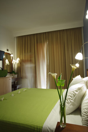 Sofia Hotel: Double room