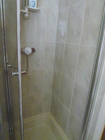 Sandown Guest House: shower