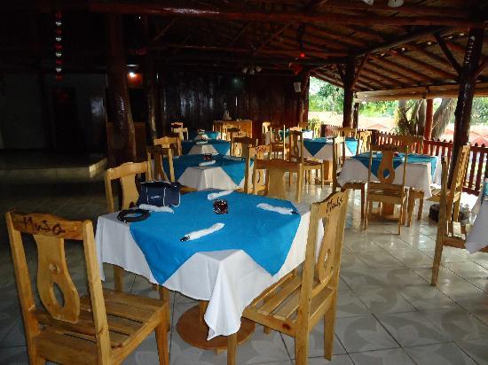 Musa Disco & Grill: Restaurante