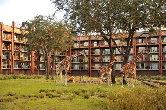 Disney s Animal Kingdom Villas   Kidani Village   UPDATED 2017 Villa  Reviews   Price Comparison  Orlando  FL    TripAdvisor. Disney s Animal Kingdom Villas   Kidani Village   UPDATED 2017