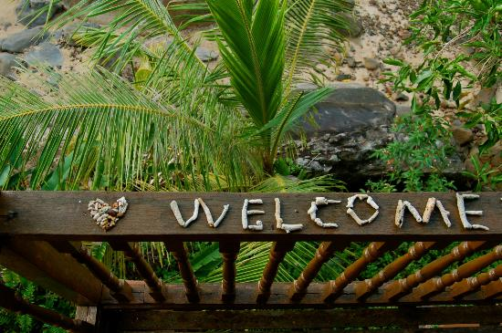 Bamboo Hill Chalets : A very special welcome left for us