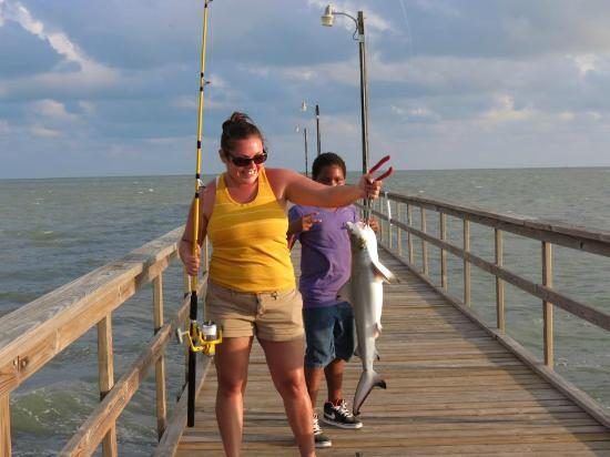 Black tip shark caught on the pier at goose island sp for Rockport texas fishing report