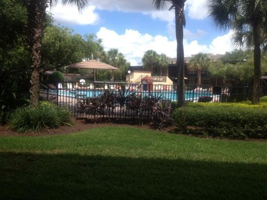Rosen Inn International: pool