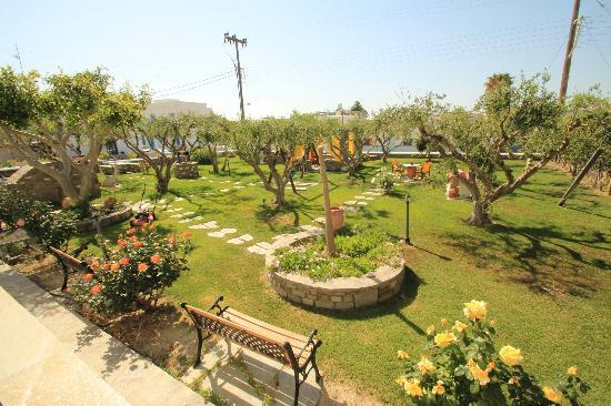 Pension Sofia: Garden
