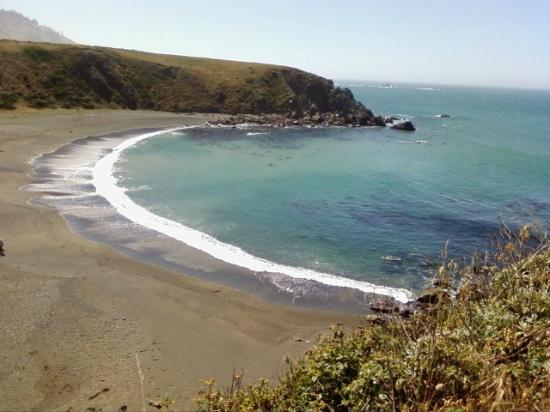 Sonoma Coast State Beach 2018 All You Need To Know Before Go With Photos Tripadvisor