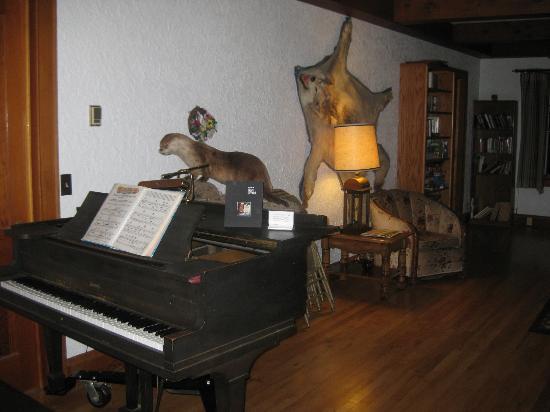 蘇必略湖瀑布旅館照片