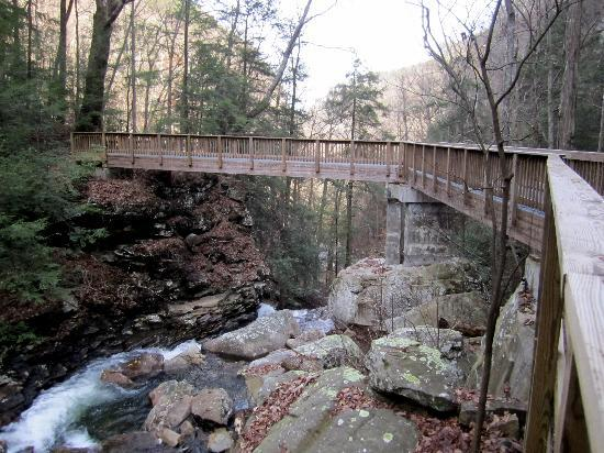 Bridge for better waterfall viewing picture of cloudland canyon cloudland canyon state park bridge for better waterfall viewing publicscrutiny Gallery
