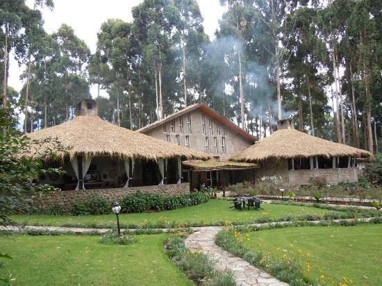 Volcanoes National Park: Gorillas Nest Hotel, Ruhengheri.